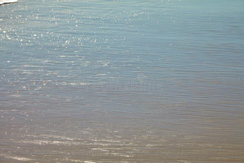 Seafoam на песчаном пляже стоковые изображения
