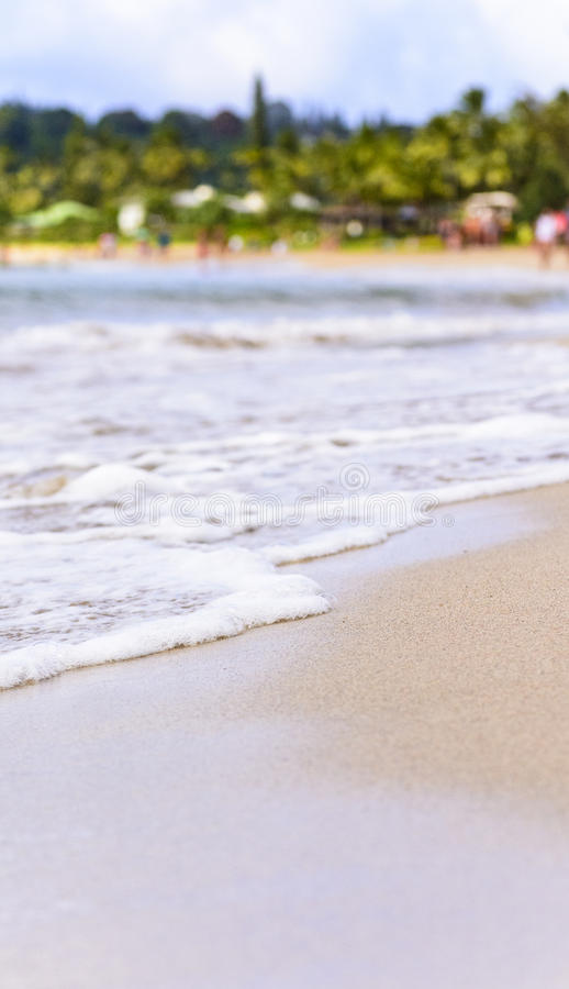 Download Seafoam Myje Up Na Tropikalnej Plaży Zdjęcie Stock - Obraz złożonej z plaża, słońce: 41952640