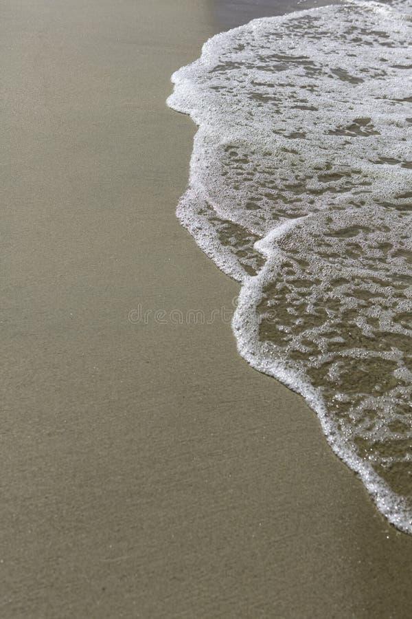 Seafoam na plaży zdjęcia stock