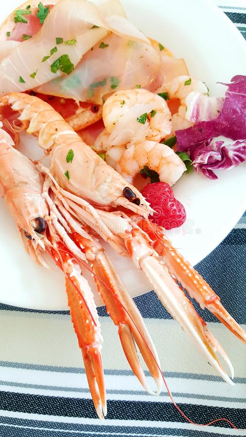 A seafood appetizer with prawn, tuna carpaccio and grapefruit slices royalty free stock photography