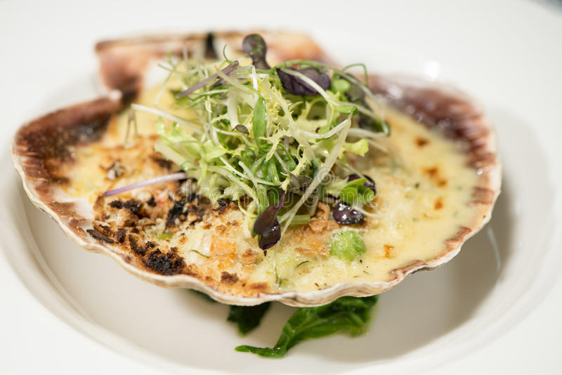Seafood - Baked Scallop On The Shell royalty free stock photos