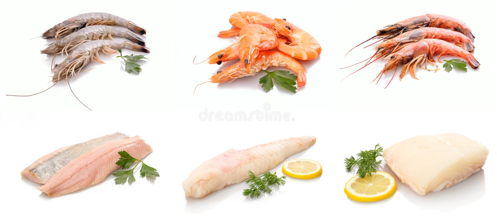 Seafood crustaceans and sea fishes. White isolated royalty free stock photos