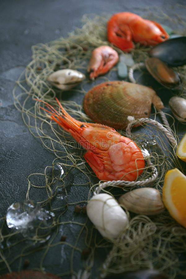 Seafood on a dark background, Close-up, Selective focus royalty free stock image