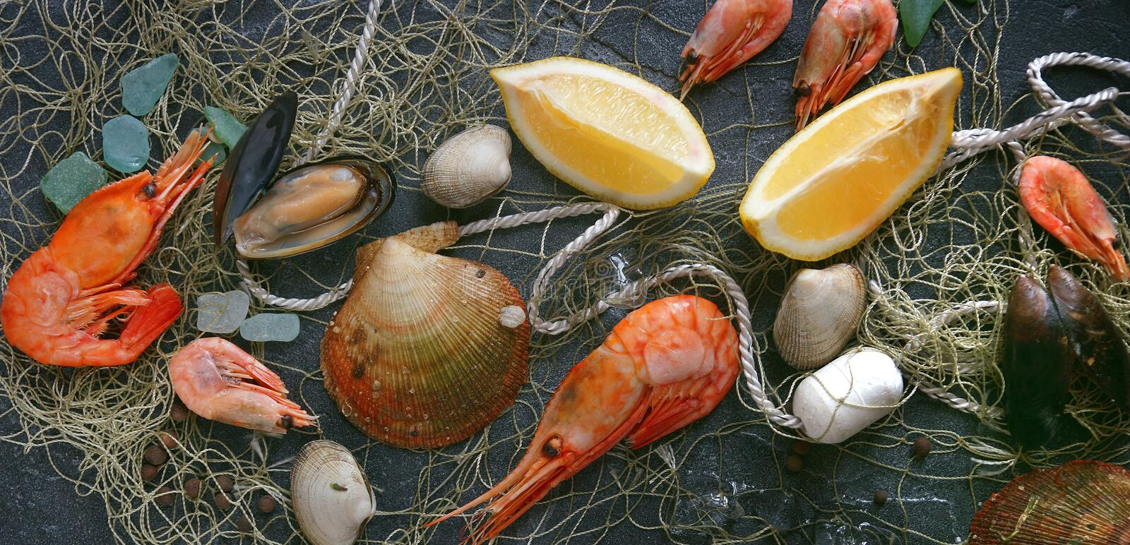 Seafood on a dark background, Shrimps, mussels, mussels on black stone, Banner stock image