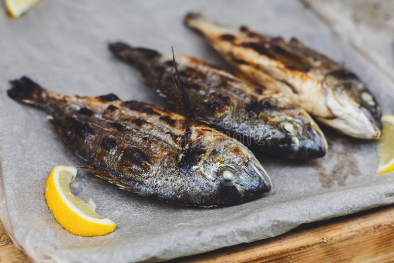 Seafood, dorado fish grilled at barbecue royalty free stock photo