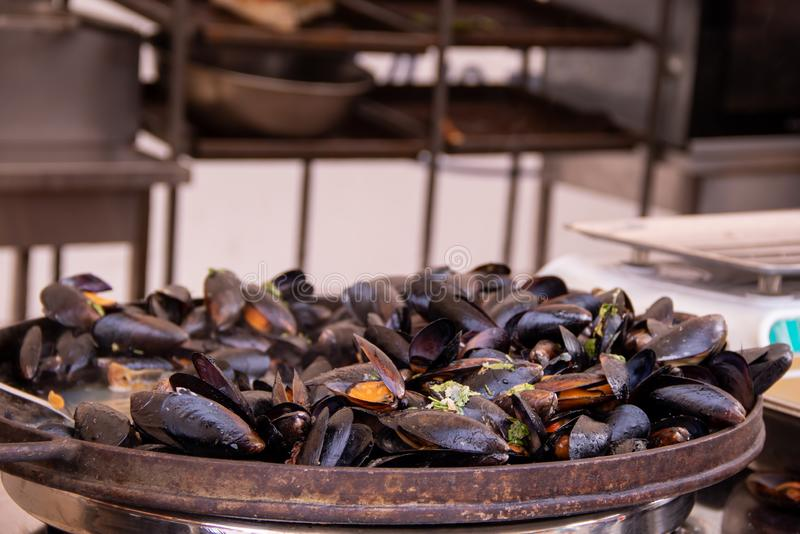 Seafood fried mussels at the festival of street food. With copyspace royalty free stock photography