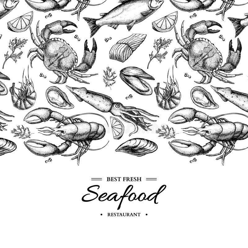Seafood hand drawn vector framed illustration. Crab, lobster, shrimp, oyster, mussel, caviar and squid. Seafood hand drawn vector illustration. Crab, lobster royalty free illustration
