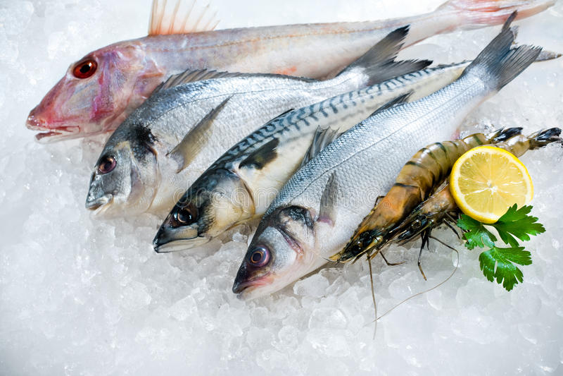Seafood on ice stock image