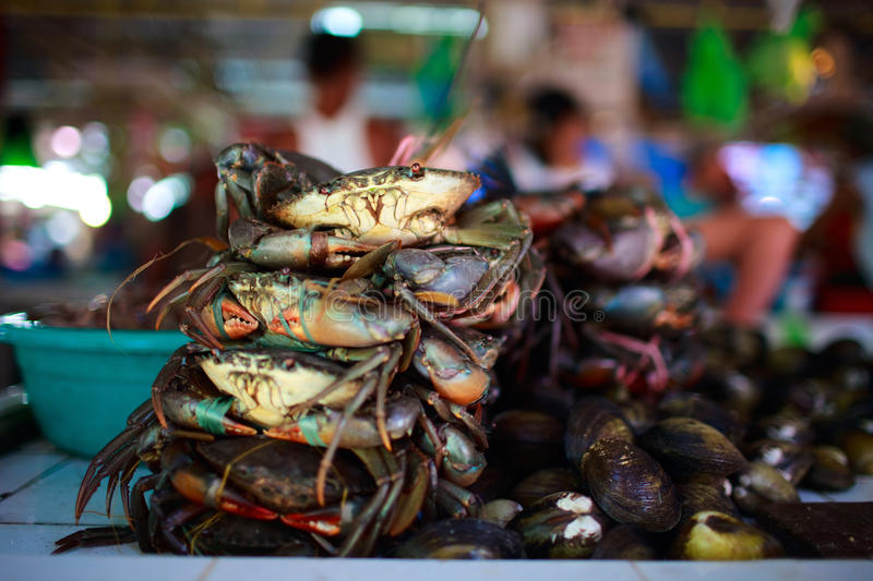 Seafood market. Exotic traditional seafood market on Boracay island in Philippines stock images