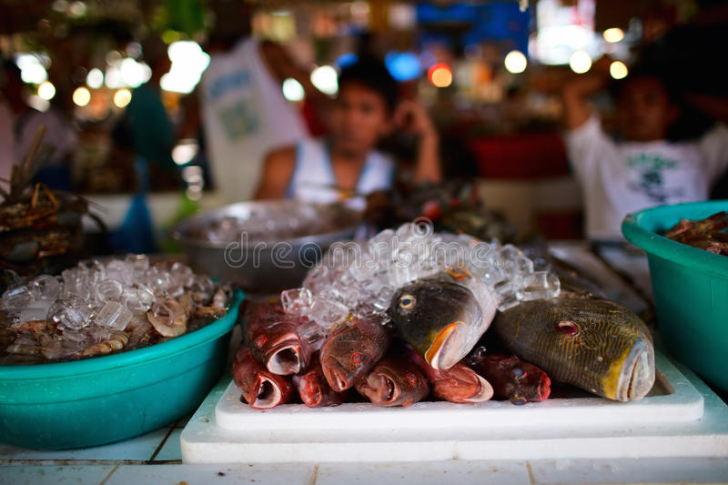 Seafood market. Exotic traditional seafood market on Boracay island in Philippines royalty free stock photography