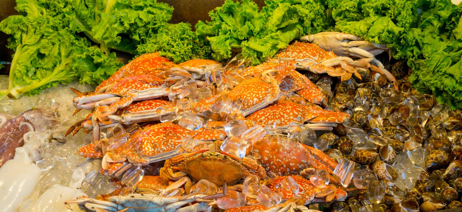 Seafood at the market big crabs in ice stock images