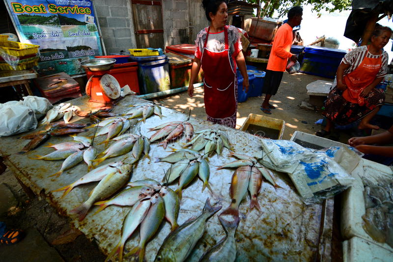 Seafood market rawai phuket thailand editorial image for Phil s fish market eatery