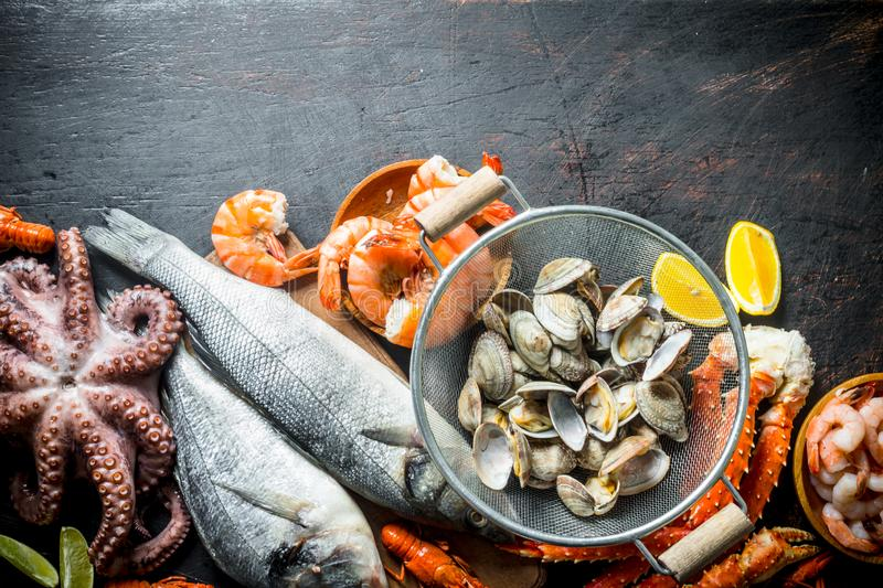 Seafood. Oysters, fresh fish, shrimp, octopus and crab with lemon slices royalty free stock photos