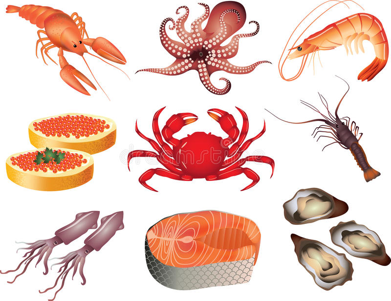 Seafood photo-realistic set. Seafood photo-realistic detailed set vector illustration