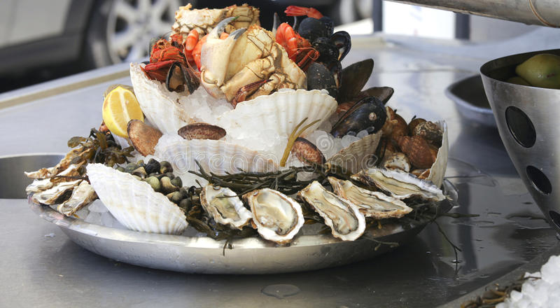 Seafood platter. Big seafood platter with clams, oyster, crab and shells royalty free stock image