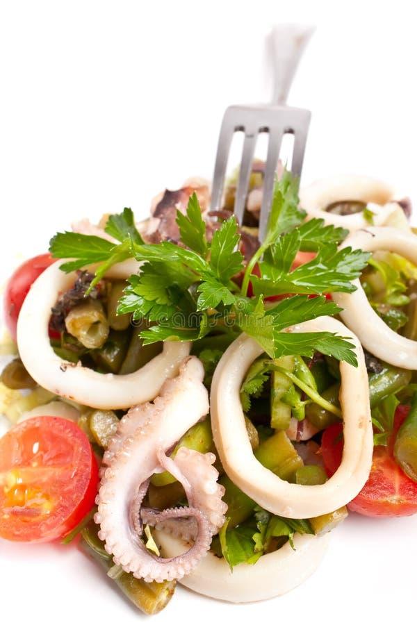 Download Seafood salad stock photo. Image of calamari, meal, ingredients - 7922510