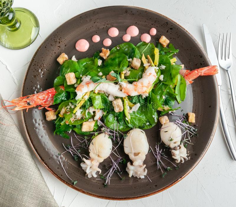 Seafood salad. Langoustino shrimp, tiger shrimp, cuttlefish, mango, avocado, arugula and spinach with grilled eggplant. Clay plate stock photography