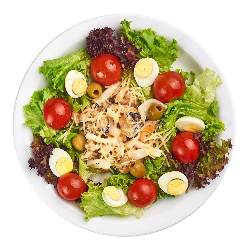 Seafood salad with mussles, squid, eggs, tomatoes, lettuce and cheese royalty free stock photography