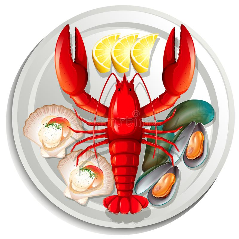 A seafood set on plate vector illustration