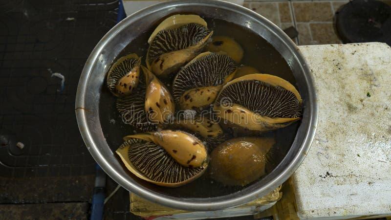 Seafoodmarket vietnamita con differenti pesci, ostriche, granchi, squali e molti altri creature del mare fotografia stock