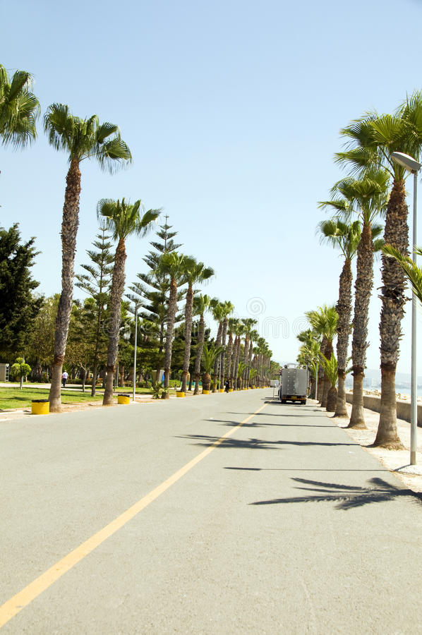 Seafront promenade Limassol Lemesos Cyprus. Palm tree fringed pedestrian promenade Akrotiri bay Mediterranean sea Limassol Lemesos Cyprus royalty free stock images