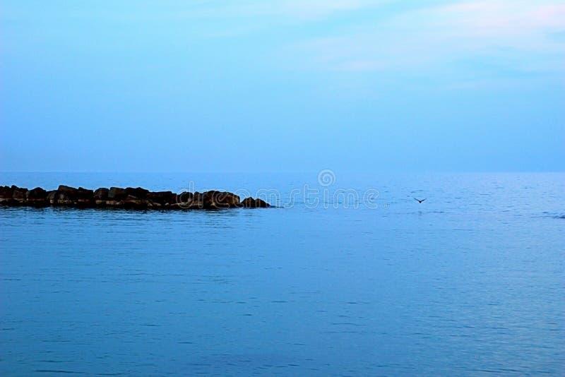 Seagull που πετά στα ύψη πέρα από την αδριατική θάλασσα στοκ φωτογραφίες