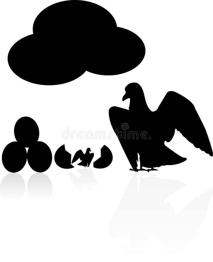 Download Seagull stock vector. Image of parents, baby, parent - 23000175