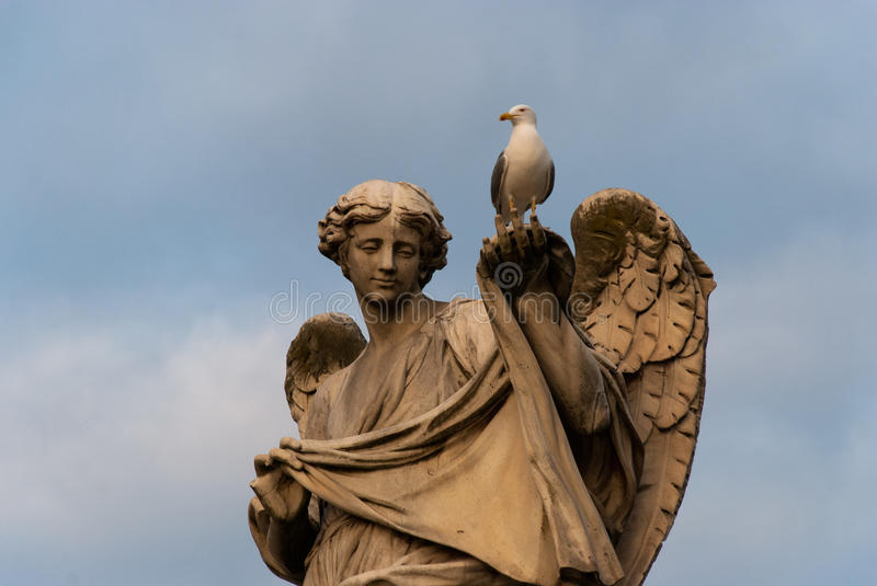 Seagull on an ancient statue stock photos