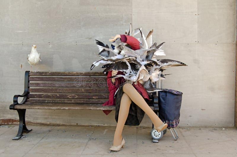 Seagull Banksy επίθεση στοκ φωτογραφία