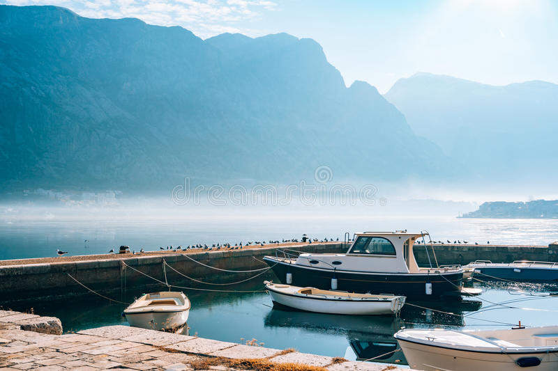 Seagull on boat moorage. Close-up. In Montenegro, the Adriatic Sea stock images