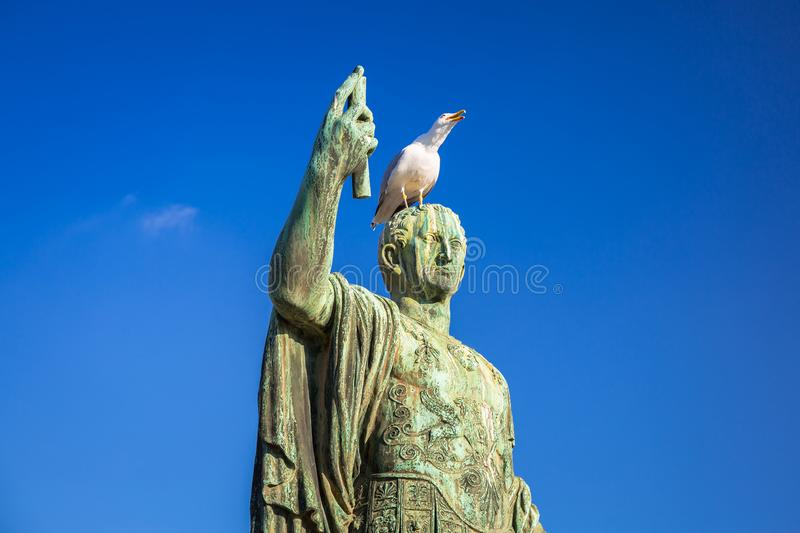Seagull on the bronze Caesar statue at Trajan Market in Rome, Italy royalty free stock photo