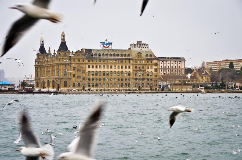Seagull för ve för Haydarpasa drevstation arkivbilder