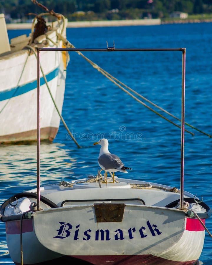 Seagull i łódź obrazy royalty free
