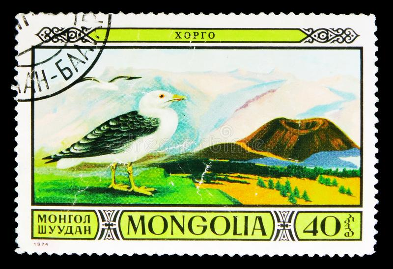 Seagull (Laridae), Protected Fauna in Mongolian Wildlife Reserve. MOSCOW, RUSSIA - MAY 15, 2018: A stamp printed in Mongolia shows Seagull (Laridae), Protected stock photography