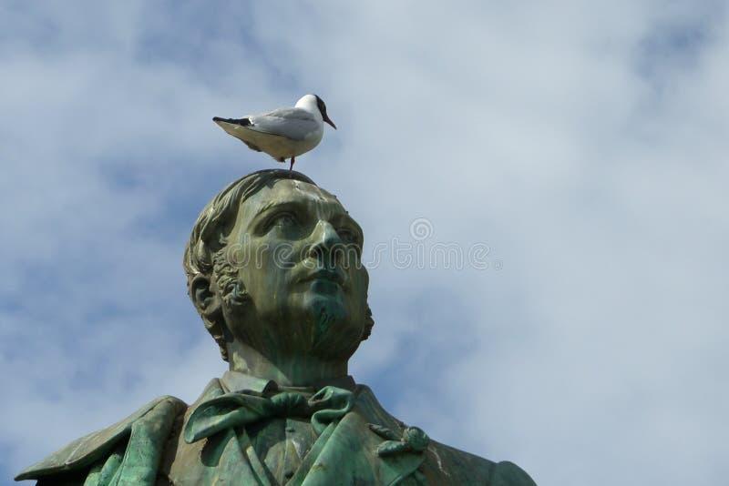 Seagull na głowie sculptur fotografia stock