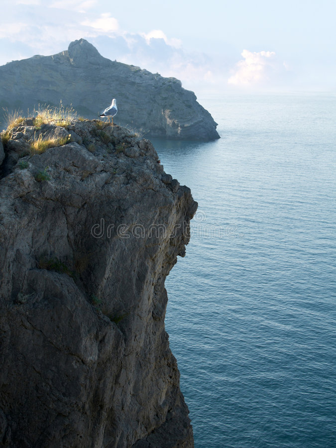 Free Seagull On The Mount Peak With Beautiful Seascape Royalty Free Stock Image - 6214686