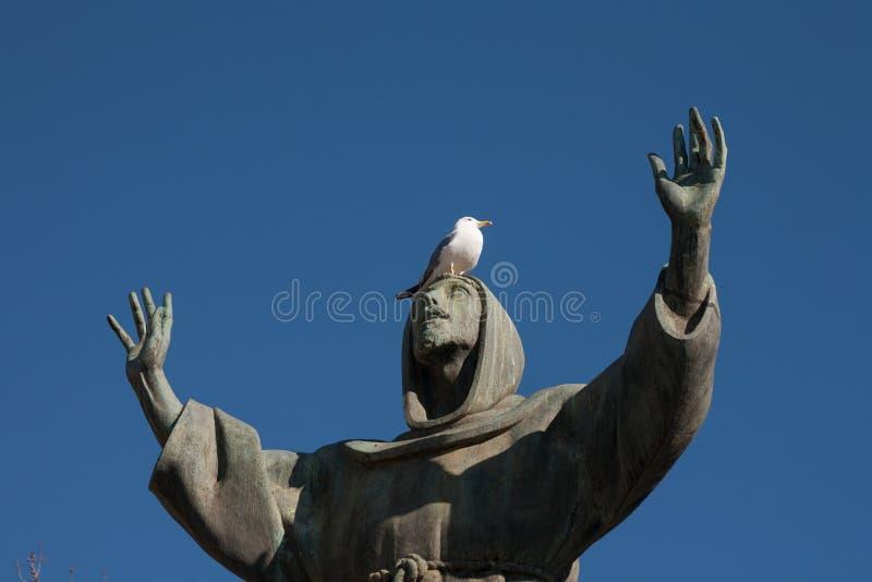 Seagull på den St Francis statyn i piazza San Giovanni, Rome, Italien royaltyfri bild