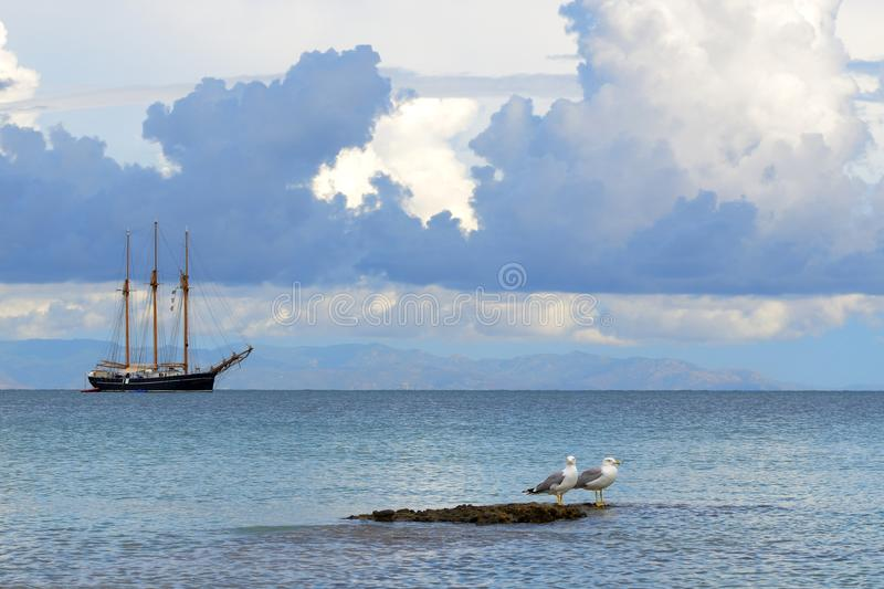 Download Seagull and sailboat stock image. Image of beauty, landscape - 32733521
