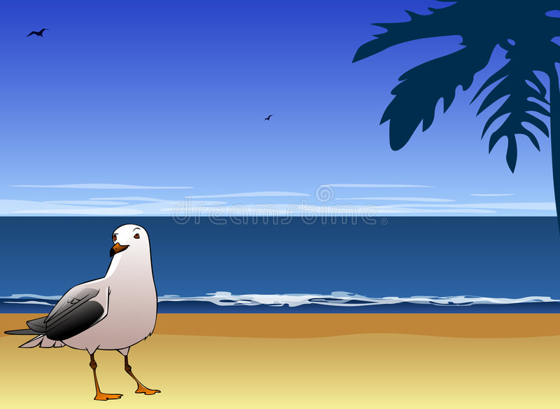 Seagull and sea vector illustration