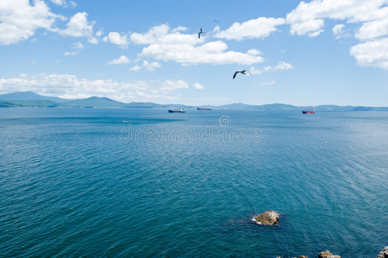 Download Seagull & Sea Royalty Free Stock Photos - Image: 6704578