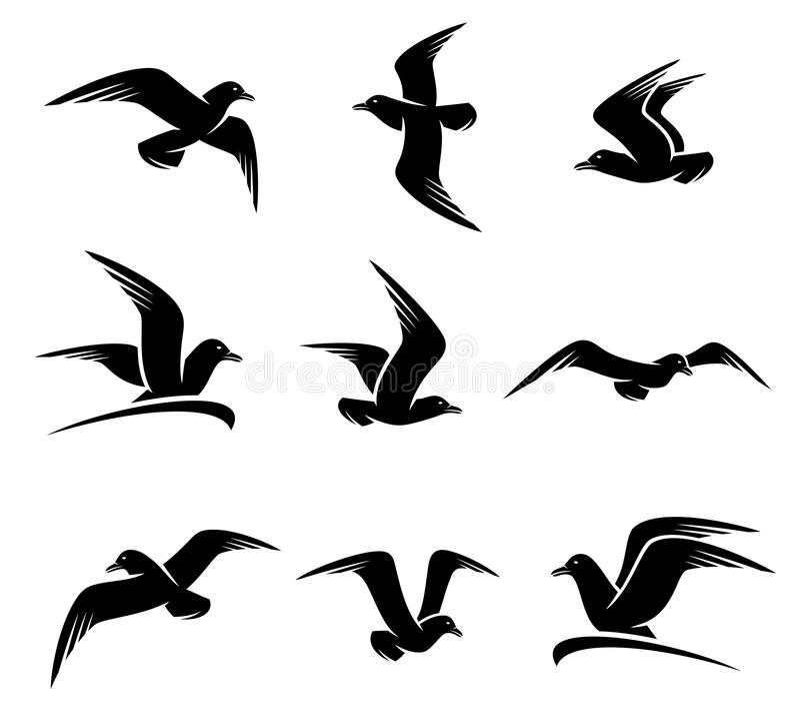 Seagull set. Vector royalty free illustration