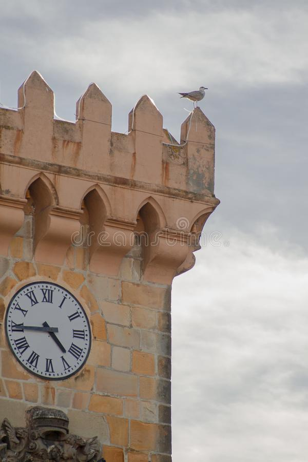 Seagull in tower with clock. Seagull resting on top of a stone tower with a clock and a cloudy sky in the background stock images