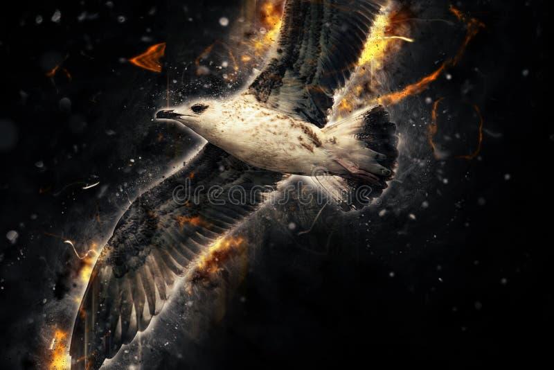 Seagull w locie Artystyczny grunge wściekłości skutek zdjęcia royalty free