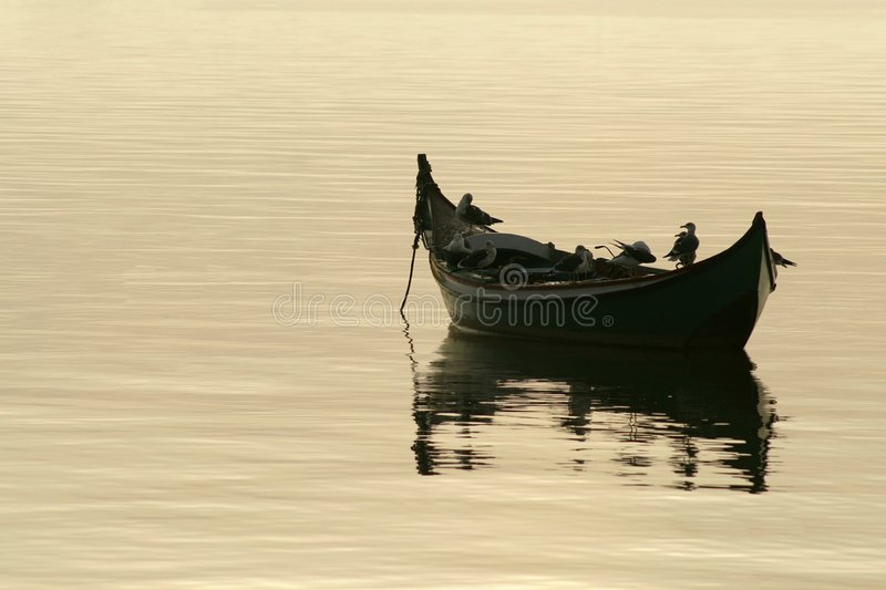seagulls βαρκών στοκ εικόνα με δικαίωμα ελεύθερης χρήσης