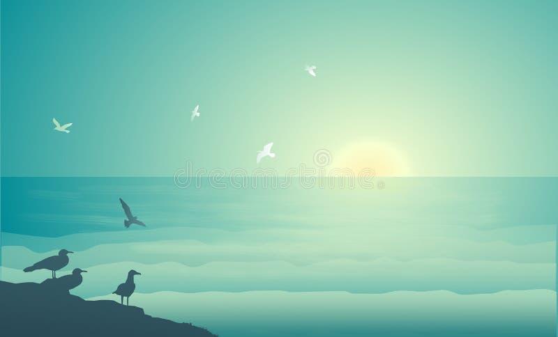 Seagulls που πετούν στα ξημερώματα, seagulls φωλιά, στοκ εικόνα με δικαίωμα ελεύθερης χρήσης