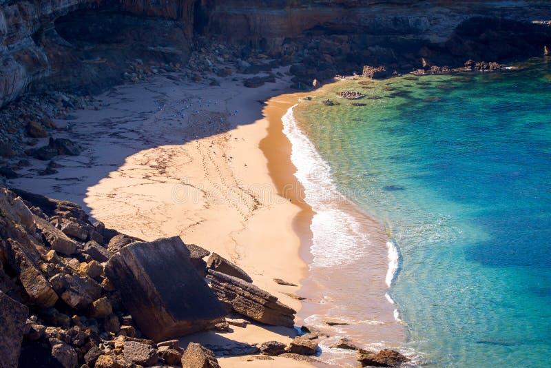 Seagulls στην αμμώδη παραλία στον κόλπο κάτω από τους απότομους βράχους πετρών στοκ εικόνα