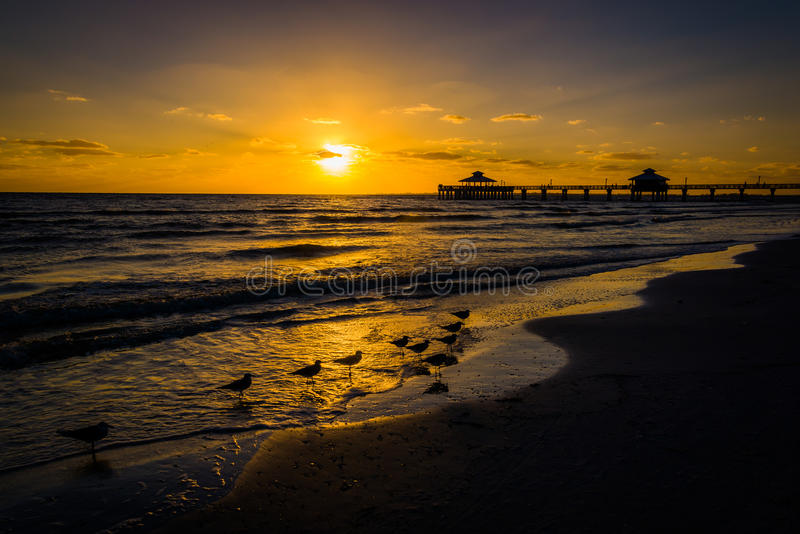 Seagulls and fishing pier at sunset in Fort Myers Beach, Florida stock photo