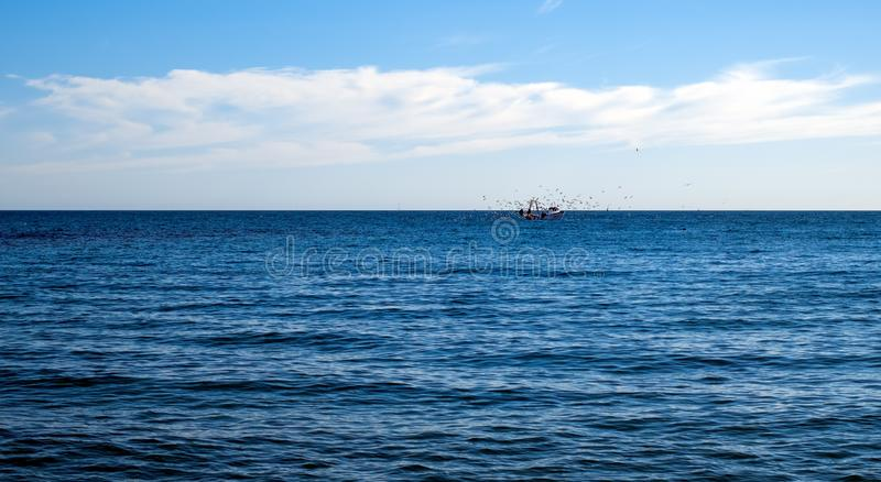 Seagulls flying over the fishing boat. With cloudy sky royalty free stock photo