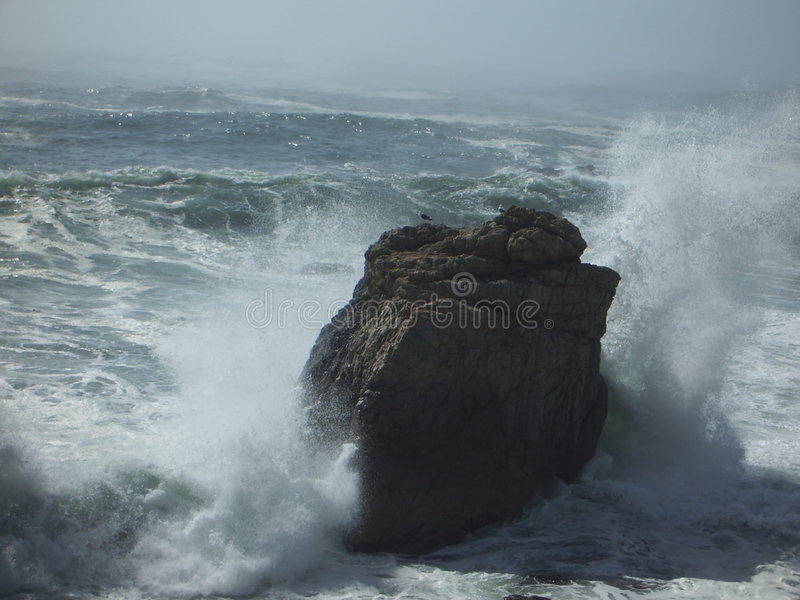 Seagulls on the rock as Waves Crash royalty free stock image