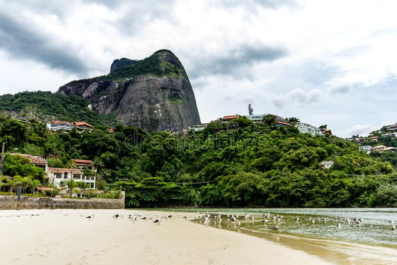 seagulls som flyger under bron i punkten var havet möter den Marapendi lagun, i Barra da Tijuca, Rio de Janeiro royaltyfri bild